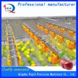 Tipo de cepillo limpiador vegetal Lavadora de pulverización