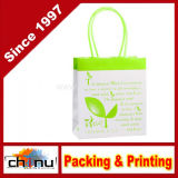 Kraft Gift Paper Shopping Bag (2139)