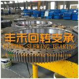 Les Chinois de la fabrication de haute qualité de roulement de pivotement