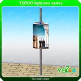 Conception personnalisée de la publicité Lampadaire Boîte à lumière