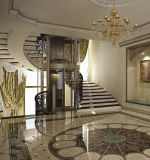 مصعد بينيّة مع رفاهية زخرفة