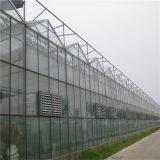 폴란드에 있는 그늘 그물 덮개 Multispan 유리에 의하여 직류 전기를 통하는 온실