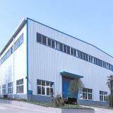 Estructura de acero galvanizada ligera modificada para requisitos particulares