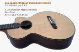 Поставщик сертификата BV/SGS выполненный на заказ полностью твердое сбор винограда классическая гитара