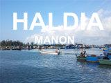 O ar quente/Serviço de Transporte Marítimo de Guangzhou para Haldia