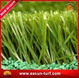 Tappeto erboso del PE della piscina ed erba artificiale