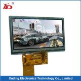 Pequeña visualización modificada para requisitos particulares del LCD con el contraluz gris