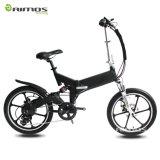 Chinesisches 20inch faltbares elektrisches fettes Gummireifen-Fahrrad der Form-750W