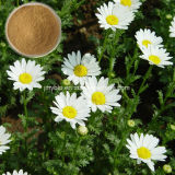 Extrait normal de 100% 0.8%-1.2% Feverfew (parthenolide)
