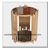 Vendita calda del nuovo tavolino da salotto di vetro con la Tabella di disegno della fabbrica