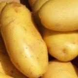 말린 탈수한 감자 조각을 분류하십시오