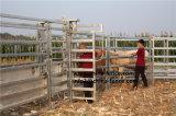Il bestiame presa di testa di schiacciamento della testa alimentatore del bestiame/schiaccia Headhole/