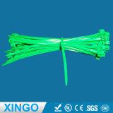 4.8*100mm autobloquant attaches de câble en nylon/Zip Tie/sangles Zap/ensemble les liens