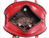 형식 디자인 고정되는 부대 쉘 부대 핸드백과 채찍질 부대 어깨에 매는 가방 핸드백