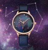 창조적인 별 하늘 여자는 2018명의 형식 은하 숙녀 시계를 본다