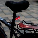 De Navulbare LEIDENE USB Lichte Reeks van Bick (BZB8001)