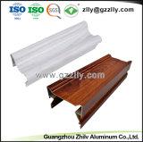 Profiel van het Aluminium van China het Fabrikant Geanodiseerde voor Heatsink