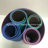 Estera colorida de la gimnasia de la yoga del ejercicio respetuoso del medio ambiente de la espuma de la TPE