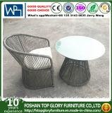 PEの藤の屋外の家具の茶表および椅子セット