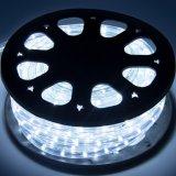 220V LED Decotation de Noël de plein air Rainbow la lumière de l'éclairage de changement de couleur Cordon LED