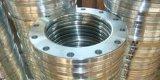中国の熱い販売のステンレス鋼304はフランジを造った
