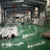 Pnoc002fw het Vaste Venster van de Dubbele Verglazing Aluminium