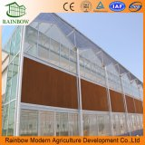 Estrutura de aço galvanizado com efeito de vidro para fins comerciais