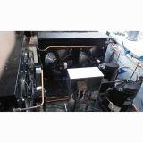 Niedriger Preis-EdelstahlPopsicle, der Maschine mit 18 Formen herstellt