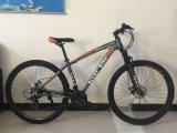 29 bicicletas de montanha de tamanho