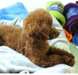 Coperta di corallo dell'animale domestico del panno morbido degli accessori Premium dell'animale domestico per il cane