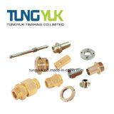 Componenti di rame fatte dei pezzi meccanici di giro di CNC