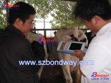 Máquina de ultrasonidos veterinaria, la Reproducción Scan para equinos, bovinos, ovinos, los gatos, perros Ecógrafo de diagnóstico, etc..
