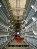 Фермы кладя куриц клеток батареи цыплятины с автоматической системой
