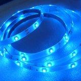 De plástico/polímero flexível RGB LED com 5m/Roll 3528/2835/5050/5630/5730/335/3014 LED SMD LED DIP de 5 mm DC12V/DC24V/AC110V/AC220V20/IP IP33/IP65/IP67/68