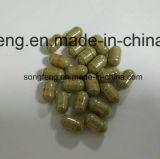 Le Ginseng Kianpi Pil pour un gain de poids avec 100 % Extrait de fines herbes Aliments de santé