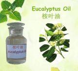 Eukalyptusöl von 60%, 70%, 80% Reinheit CAS: 8000-48-4