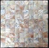 Mosaico del shell 30*30 del agua dulce del color de la naturaleza