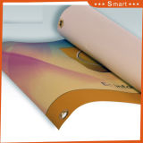 新しいデザイン屋外広告の印PVCビニールの旗