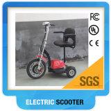 障害があるシートとの熱い販売の電気3つの車輪のスクーター48V 500W