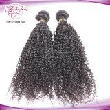 Cabelo humano cambojano Curly do cabelo 100% do Virgin do Afro que tece o transporte livre