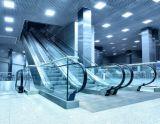 Im Freien HandelshochleistungsVvvf Innenrolltreppe