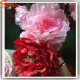 Fleur chinoise Fleurs artificielles Pivoine à trois têtes