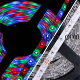 Tira flexible decorativa de Highbightness 2835 SMD LED LED