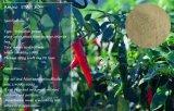 Aminoácidos de la fuente del vehículo o del animal del fertilizante orgánico