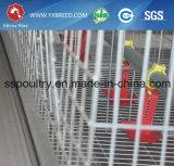 De Kooien van de kip voor het Landbouwbedrijf van het Gevogelte van de Kip in Afrika
