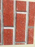 Rol van het Staal van de Kwaliteit PPGI/PPGL/Gi/Gl van Hight de Kleur Met een laag bedekte voor het Staal van Yehui van het Blind van de Rol