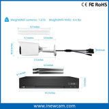 Tag und Nacht Fernüberwachung 1080P WiFi P2p IP-Kamera