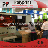 Copo de plástico de alta qualidade máquina de formação (PPTF-70T)