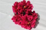 Fiore artificiale di seta del Hydrangea di alta qualità per la decorazione di cerimonia nuziale