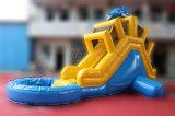 イルカの裏庭水のための膨脹可能な水スライドは駐車する(CHSL437)